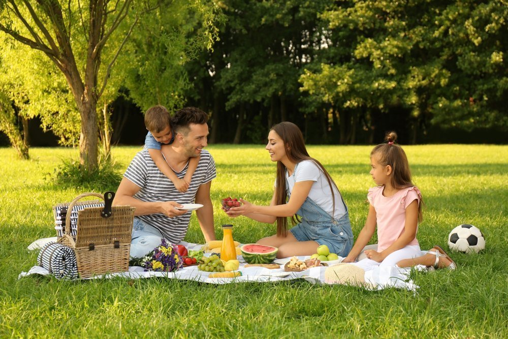 Entertaining Outings The Whole Family Will Enjoy Picnic