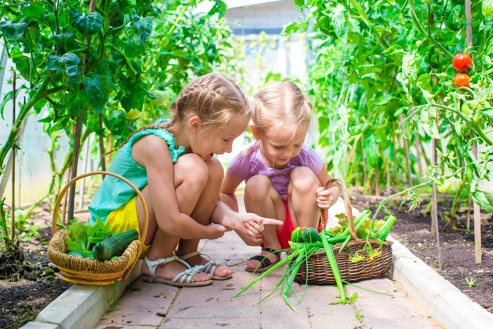 Why You Should Start A Veggie Garden With Your Kids Kids Outside