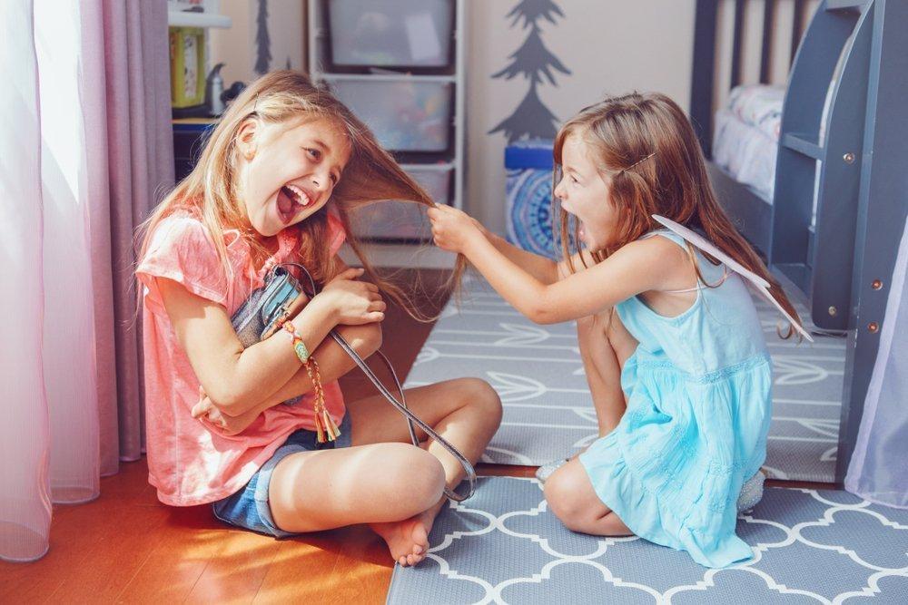 6 Ways To Avoid Raising A Bully Sibling Interaction