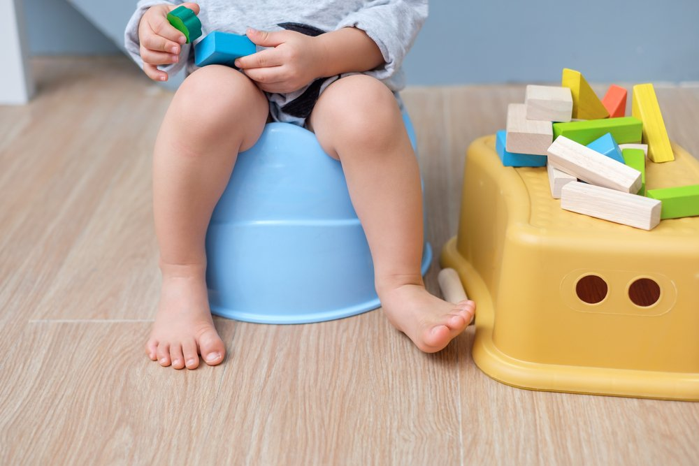 Tips To Successfully Potty Train