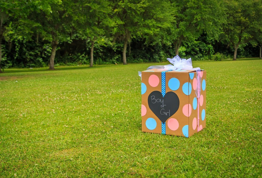 Fun Gender Reveal Ideas Balloon Box