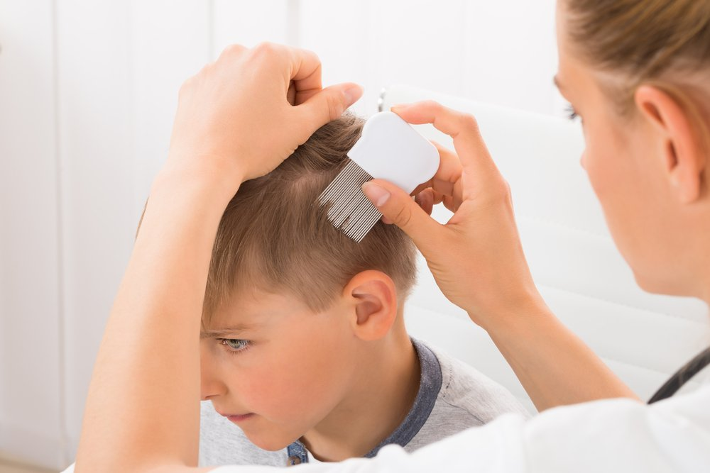 How To Get Rid Of Nits And Lice How To