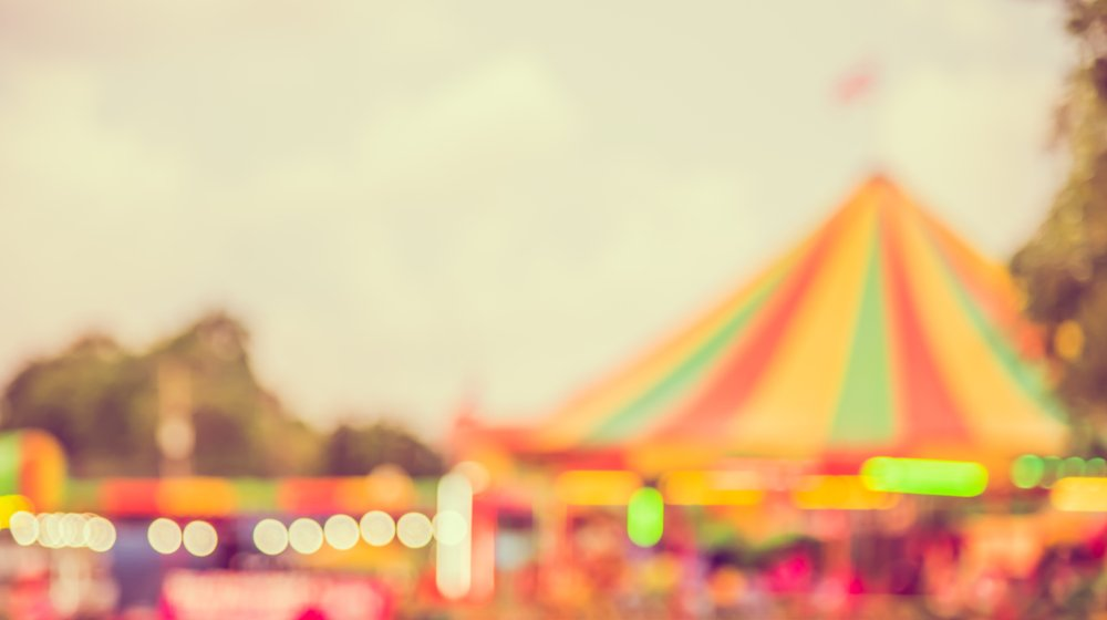 Great Fundraising Ideas For Your Kid's School A Carnival Day
