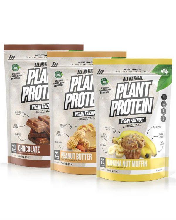 3 PACK - 100% Natural Plant Based Protein - Bundle