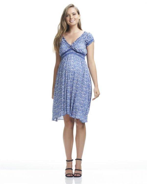 Jess Print Midi Maternity Dress
