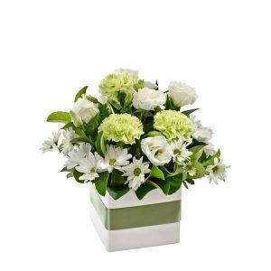 Avocado - Petite Flower Box