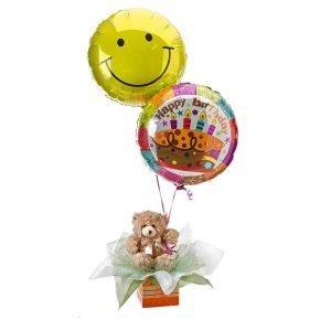 Birthday Surprise - Balloons & Teddy