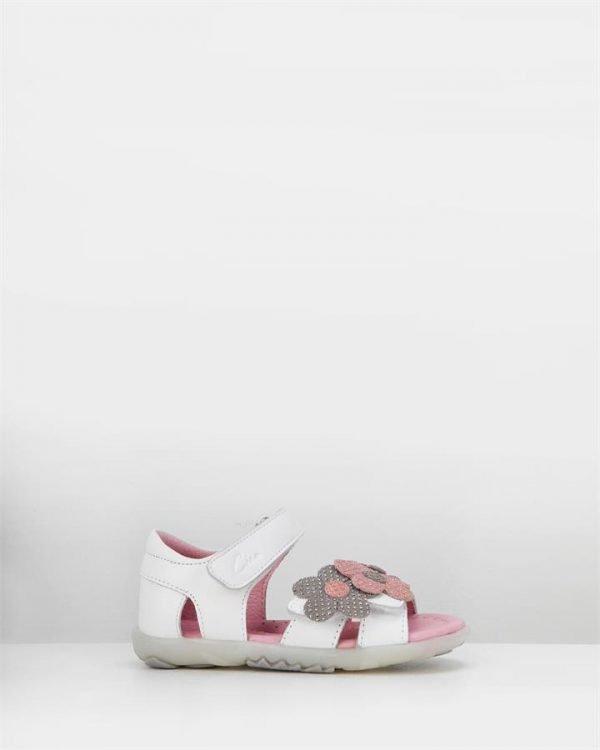 Daisy White/Pink