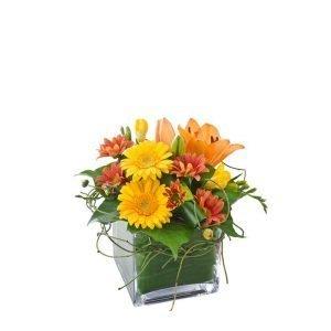 Ginger - Bright Arrangement of Blooms