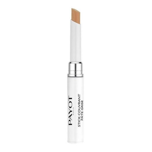 Payot Pate Grise Stick Couvrant Purifying Concealer 1.6g