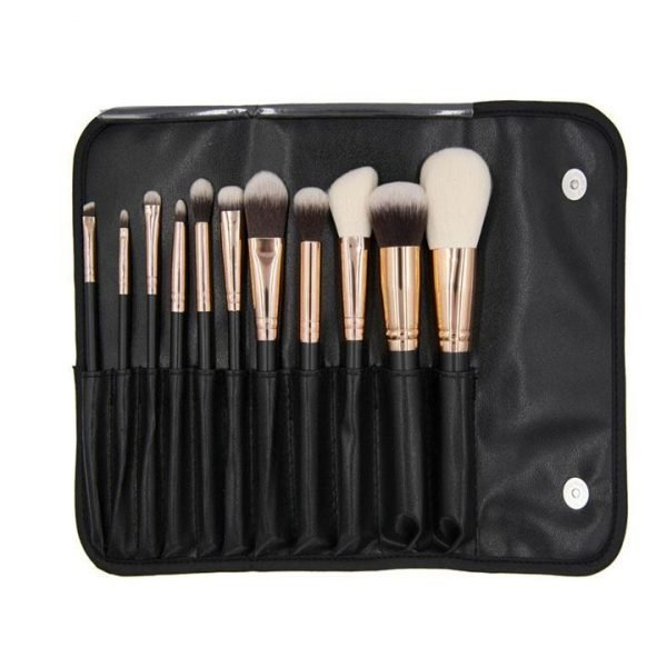 Crown Brush Set 900 11PC Pro Master brush Set