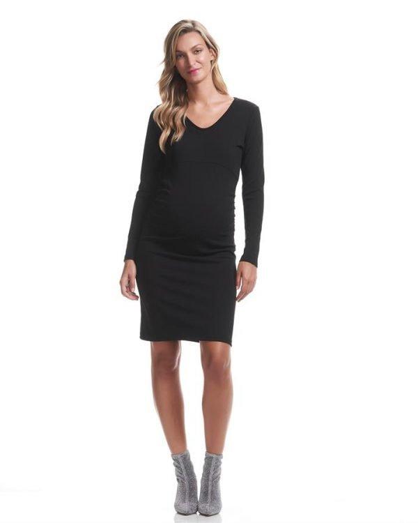 Suri Long Sleeve Maternity Dress